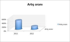 2012 artış oranları
